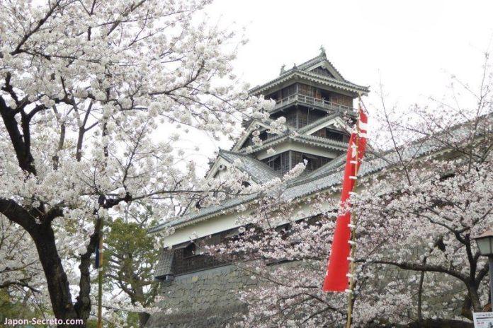 Castillo de Kumamoto (熊本城). Abril de 2016. Flores de sakura