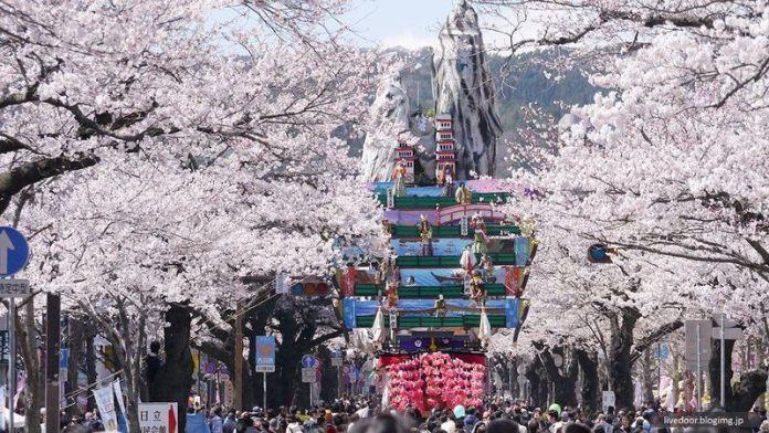 Festivales de Japón en abril: el Hitachi Sakura Matsuri. Festival de los Cerezos. Primavera. Sakura