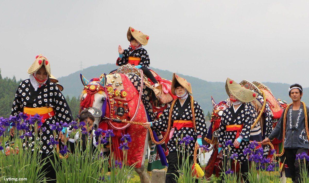 Chagu Chagu Umakko @ Santuario Morioka Hachimangu | Morioka | Iwate Prefecture | Japón