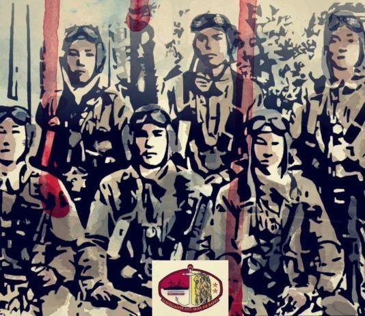 """""""Kamikaze. Protectores del Reino Central de los Llanos de Juncos"""", de Javier Yuste (2015)"""