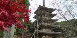 Pagoda del templo Daigoji (Kioto) en otoño