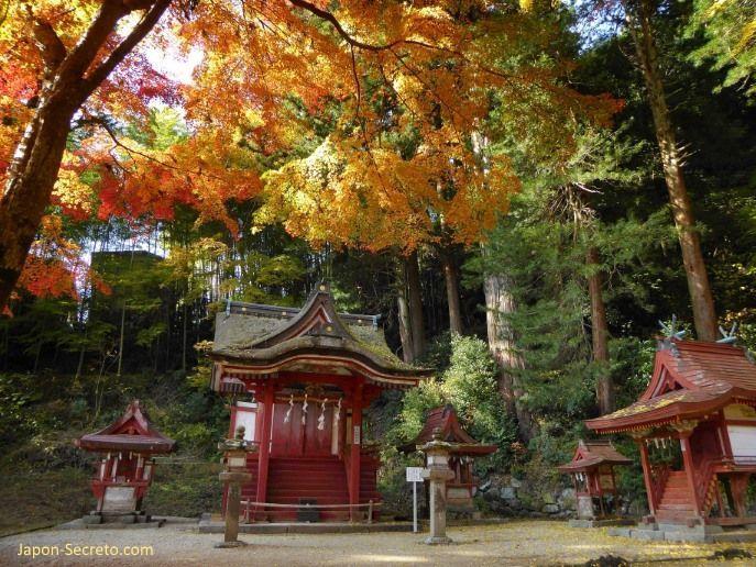 """Momiji en el santuario Tanzan (""""Tanzanjinja"""", 談山神社) en Sakurai (prefectura de Nara) en otoño."""