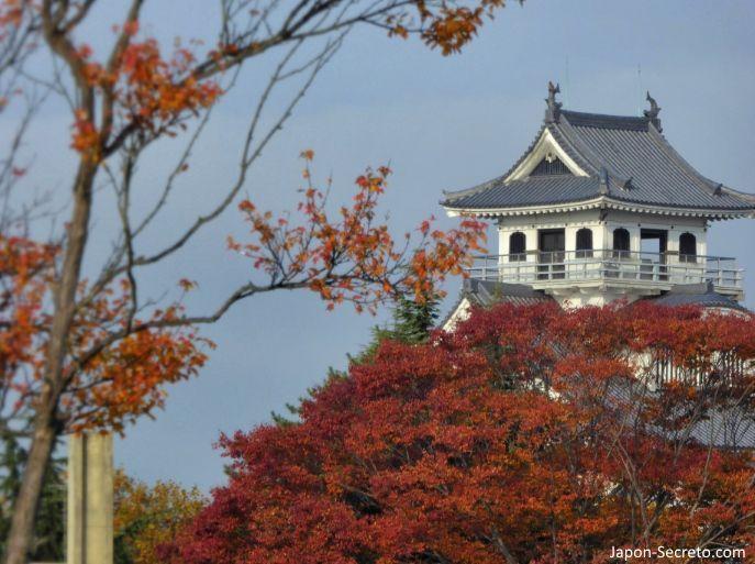 Excursiones desde Kioto: vistas del castillo de Nagahama desde el parque Hō.