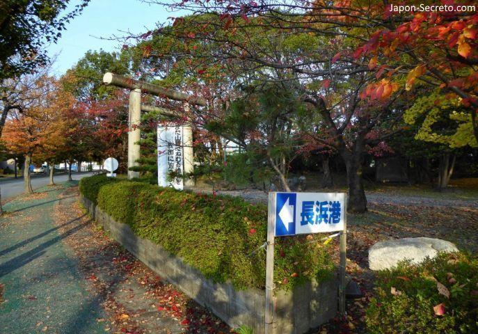 Excursiones desde Kioto: el parque Hō de Nagahama, muy cerca del lago Biwa