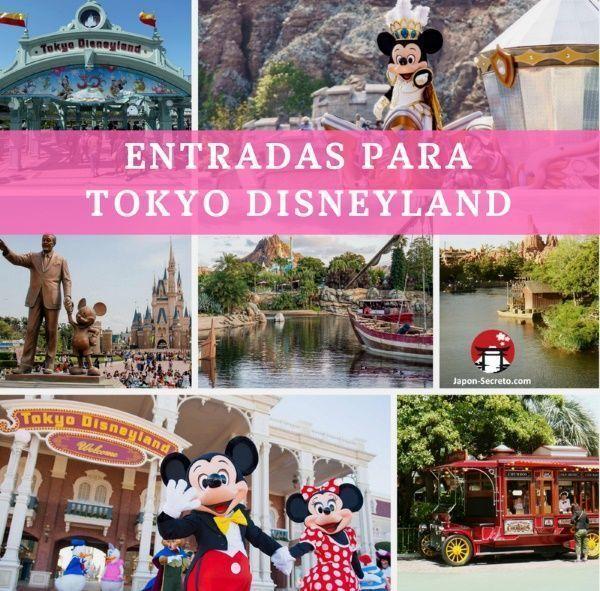 Comprar entradas para el parque temático Tokyo Disneyland (Japón)
