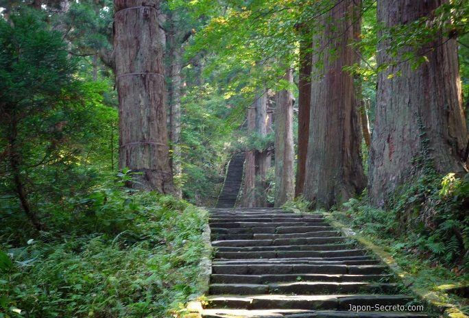 Dewa Sanzan: monte Haguro. Camino de 2446 escalones