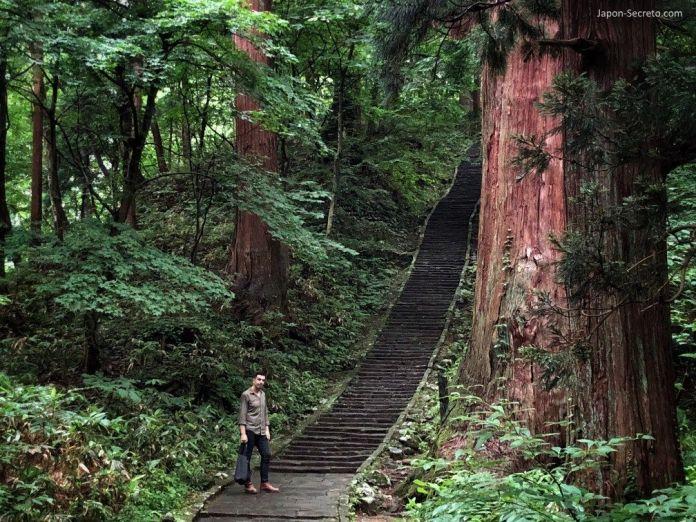 Japón. Ruta de peregrinación Dewa Sanzan. Monte Haguro (Hagurosan). Sendero de piedra. 2446 escalones.