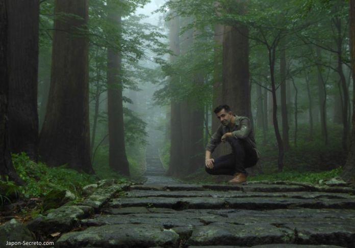 Japón. Ruta de peregrinación Dewa Sanzan. Monte Haguro (Hagurosan). Bosque de arces y sendero de piedra. 2446 escalones. Senderismo. Ruta a pie