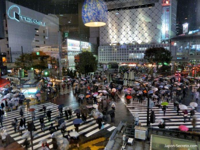 Viajar a Tokio: vista del cruce de Shibuya desde Starbucks-Tsutaya con lluvia