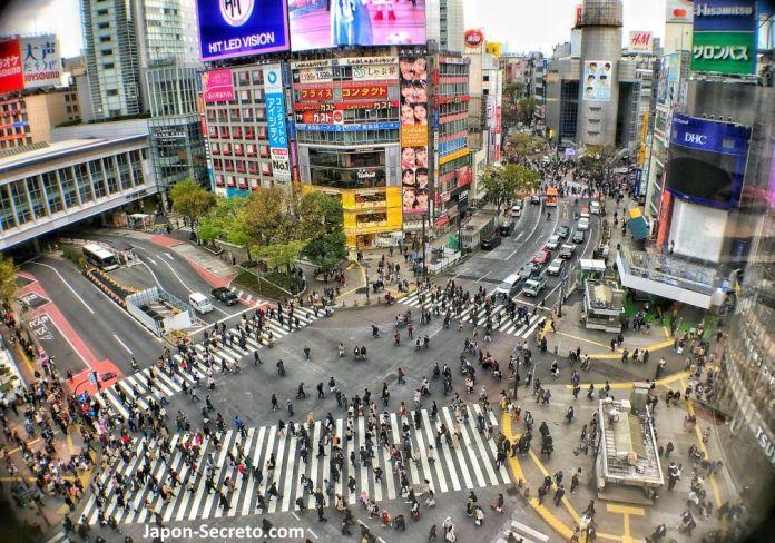 Observatorio Mag's Park. Magnet by Shibuya 109. Vistas del cruce de Shibuya. Tokio, que ver y hacer. Guia de viaje