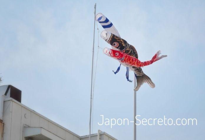 El Día de los Niños en Japón (子供の日, Kodomo No Hi), el 5 de mayo. Carpas koinobori, cometas al viento