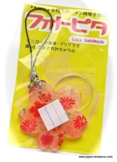 Kit Fotopita Accroche portable Sakura (Fleur de cerisier)