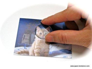 Kit Porte-clés Fotopita