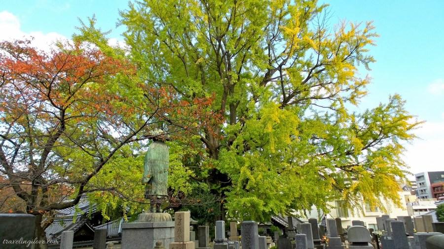Najstarszy mieszkaniec Tokio