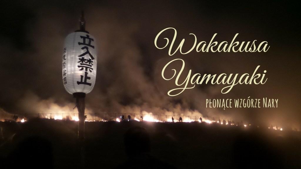 Nara Wakakusa Yamayaki