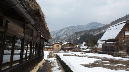Shirakawa-go (14)