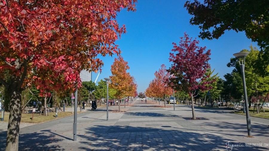 Pogodna jesień w Tokio