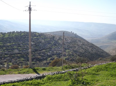 Green hills of Umm Qais