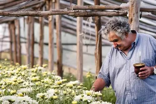 Uruguai, país exemplo de simplicidade e vanguarda sustentável