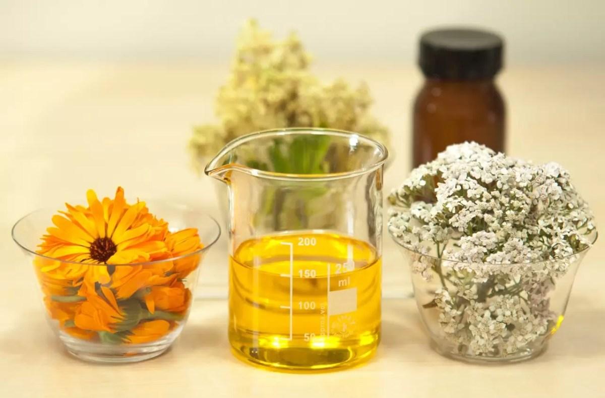 Saiba como óleos essenciais são produzidos no Sítio Harmonia Natural
