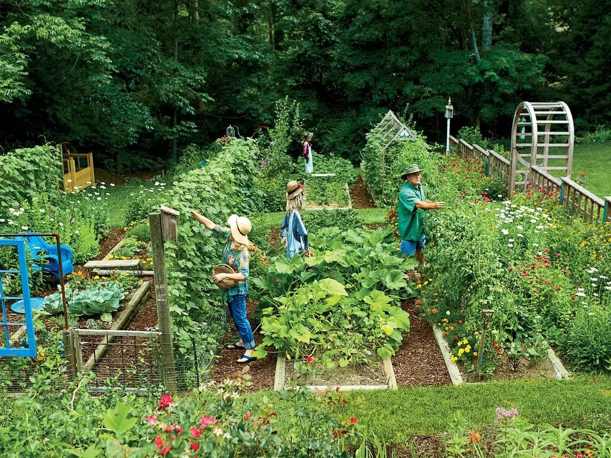 Story Name: Ramsey Garden