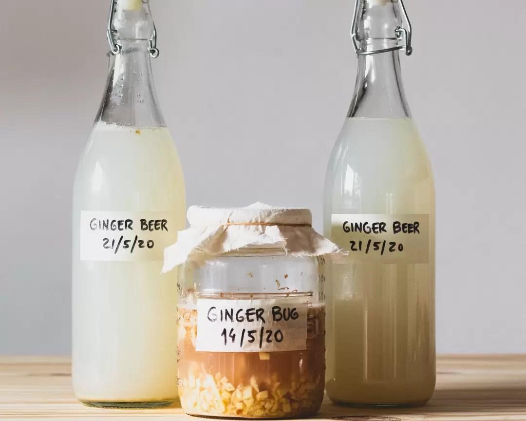 Como fazer cerveja de gengibre com ginger bug