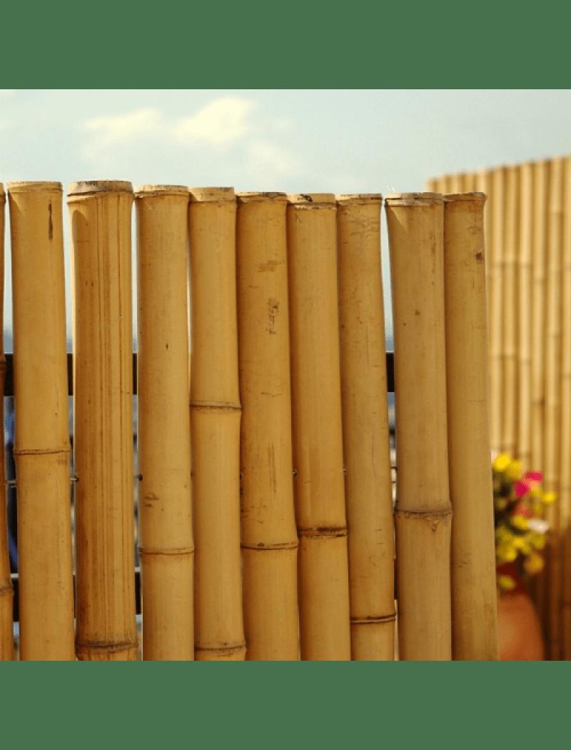 Faire Une Palissade En Bambou : faire, palissade, bambou, Cloture, Bambou, Jardin, Palissade, Naturel