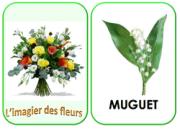 imagier fleurs1
