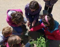 jardin de soin : un atelier de jardinage avec le jardin des hêtres 1