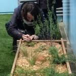 Formation-jardin-therapeutique-chu-grenoble-jardin-des-hetres-atelier
