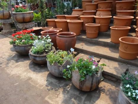 terracotta pots for sale