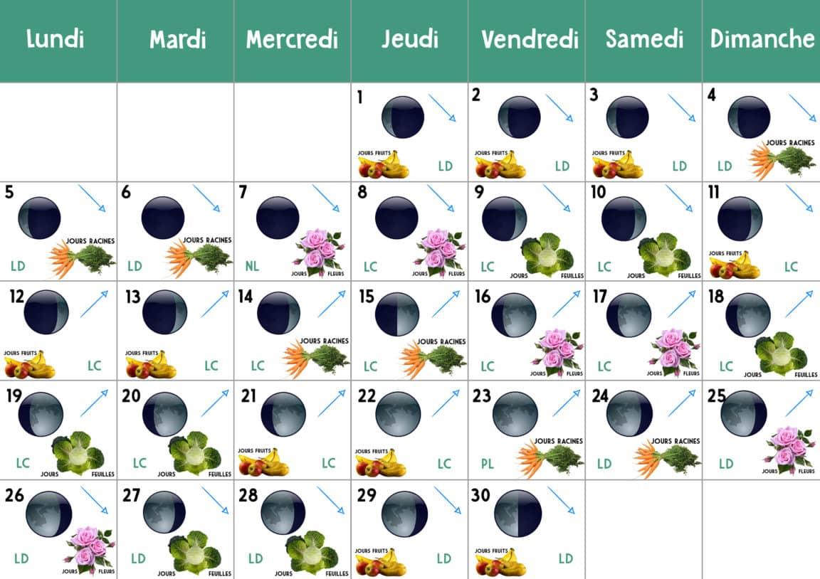 Calendrier Lunaire Septembre 2020 Rustica.Jardiner Lune Potager Jardiniere Bois Surelevee Un Potager