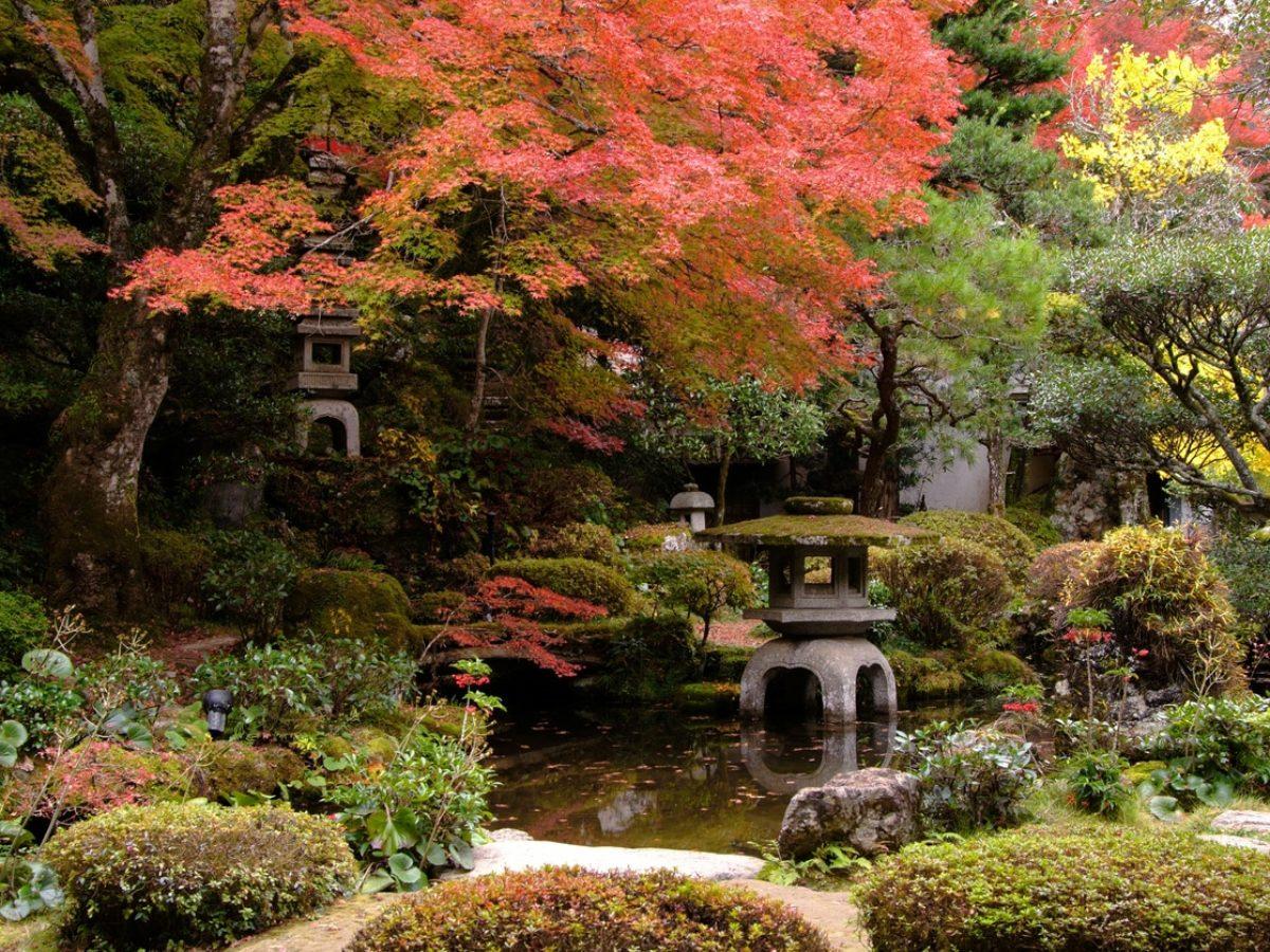 jardin japonais comment creer un