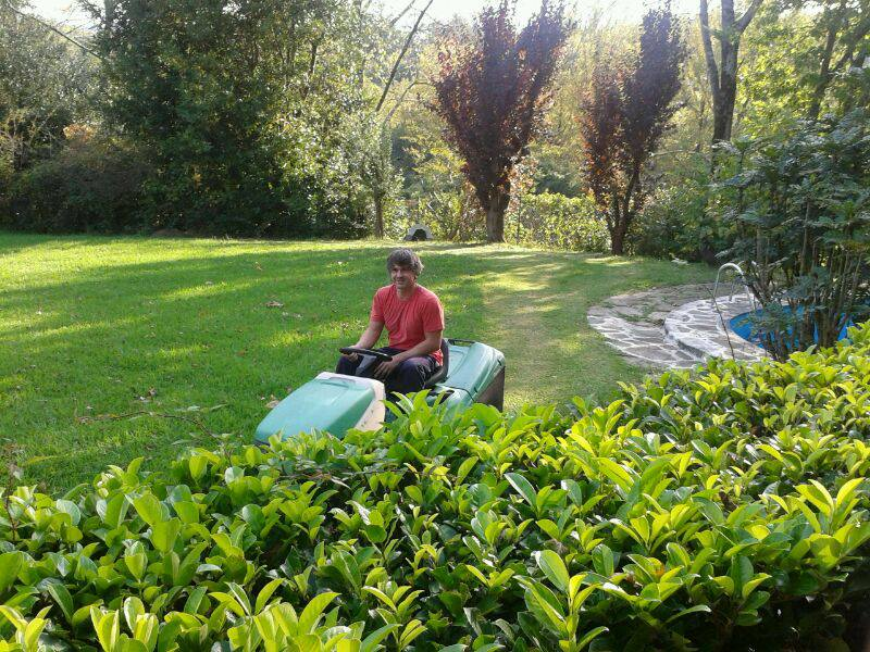 Mamtenimiento de jardines en Donosti
