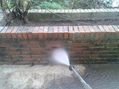limpieza-jardinera