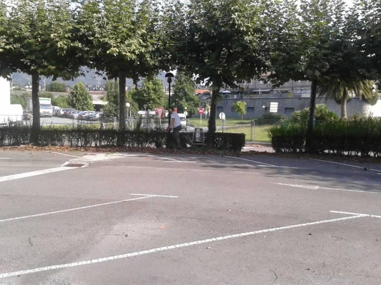 mantenimiento-jardines-empresa-20140905_101644