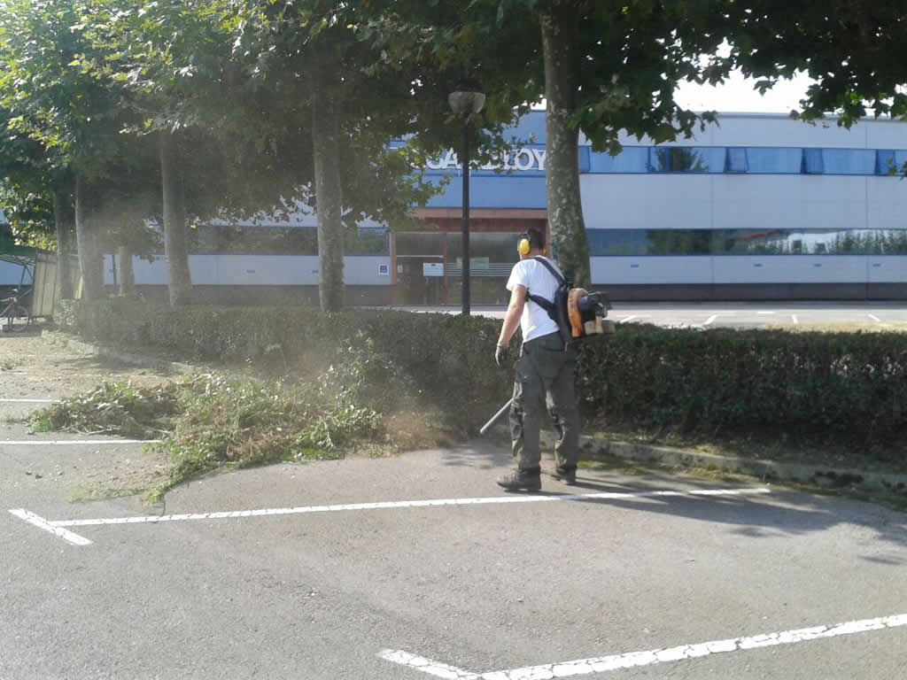 mantenimiento-jardines-empresa-IMG-20140905-WA0010