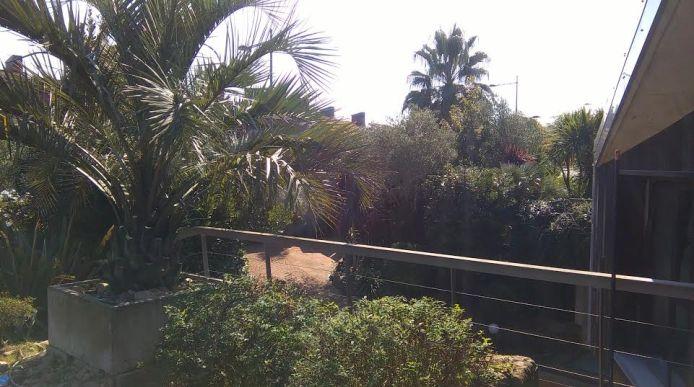 trabajos de jardineria en paseo Oriamendi