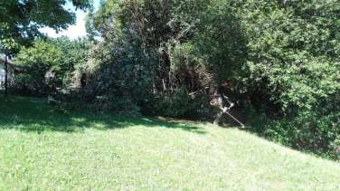 Trabajos de jardineria en Gipuzkoa