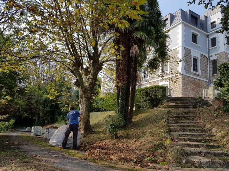 Trabajos de jardinería en Donostia