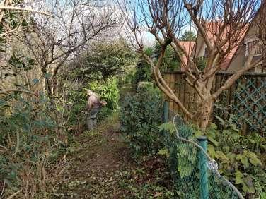 Jardineria en Irun