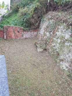 podas talas y limpieza de terrenos en Donostia
