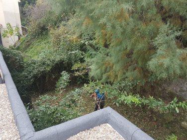 Limpieza de terrenos en Donostia