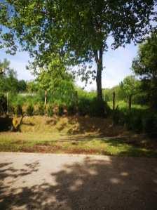 reforma-de-cercado-y-plantacion-camping-5