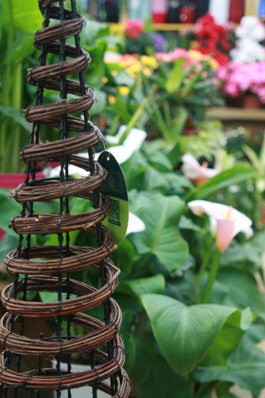 jardinerie perigny garden vente plante fleur jardin - 94 val de marne (14)