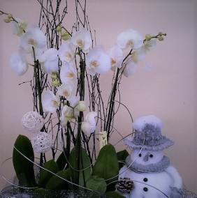 perigny-garden-creation de bouquet - fleuriste val de marne (140)