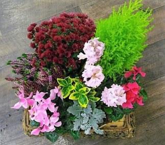 perigny-garden-creation de bouquet - fleuriste val de marne (23)