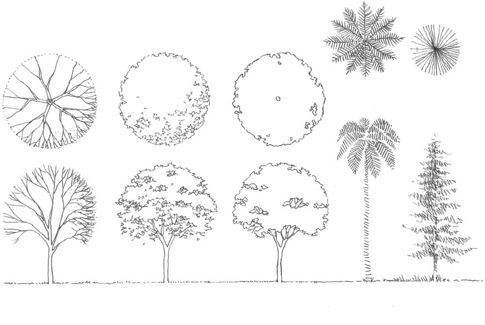 Como diseñar arboles para paisajismo y arquitectura   Jardines con Alma