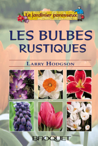 bulbes
