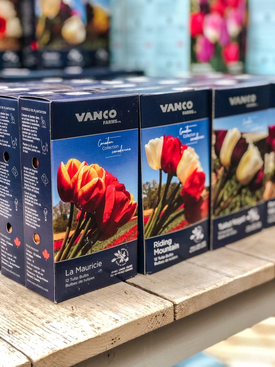 Boîtes de bulbes de tulipe VanCo Farms. Les sélections La Mauricie et Riding Mountain sont visibles.